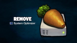 remove system optimizer