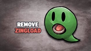 remove zingload